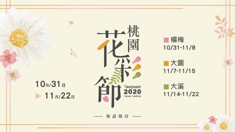 2020桃園花彩節|楊梅、大園、大溪展區交通花期懶人包 |油畫般波斯菊花田
