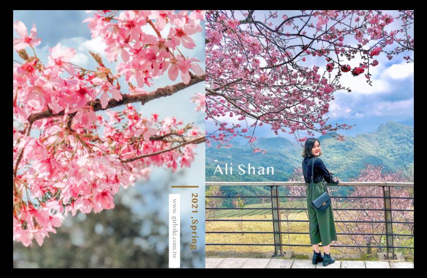 阿里山櫻花季2021|阿里山火車、交通管制、天氣、六大賞櫻景點攻略