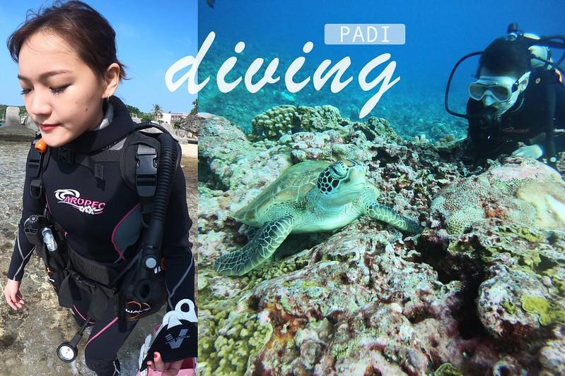 小琉球潛水推薦|小琉球綠蠵龜潛水 PADI 潛水證照 |  PADI 證照懶人包